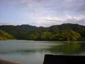 稲倉ダムと緑色に染まりつつある山。