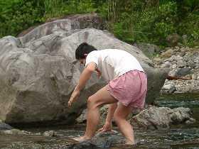 岩に近づくダンディー。